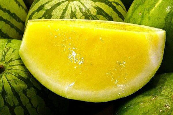арбуз-желтый-бессемянный-оптом-доставка-по-россии-min