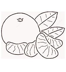 мандарины-оптом