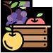 ягоды-фрукты-оптом-доставка