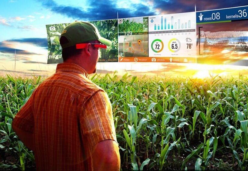 Сбербанк и Министерство сельского хозяйства намерены сотрудничать в области цифровой трансформации
