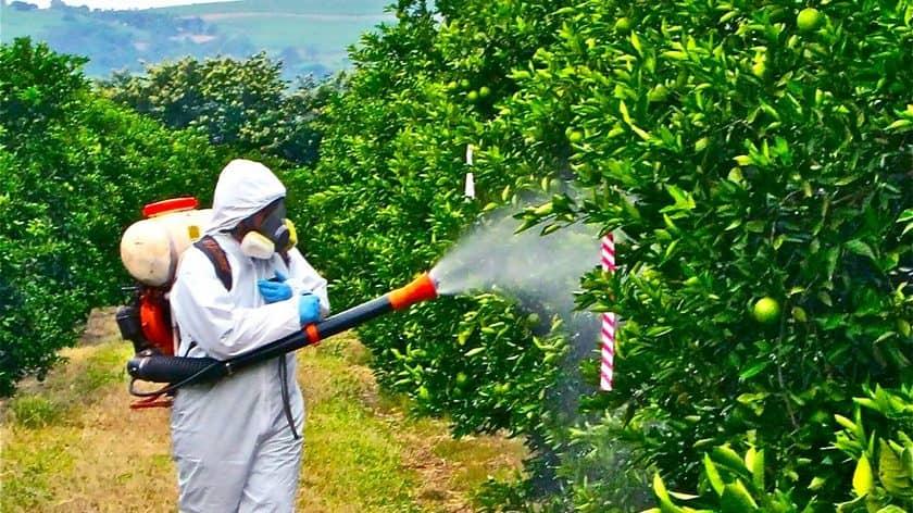 удобрения-и-средства-защиты-растений