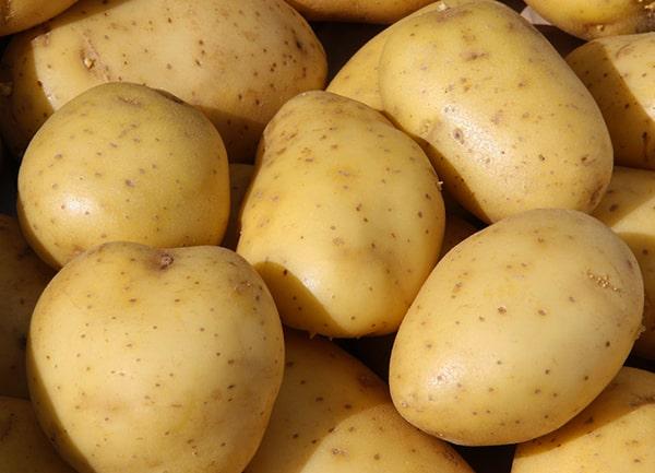 картофель-вега