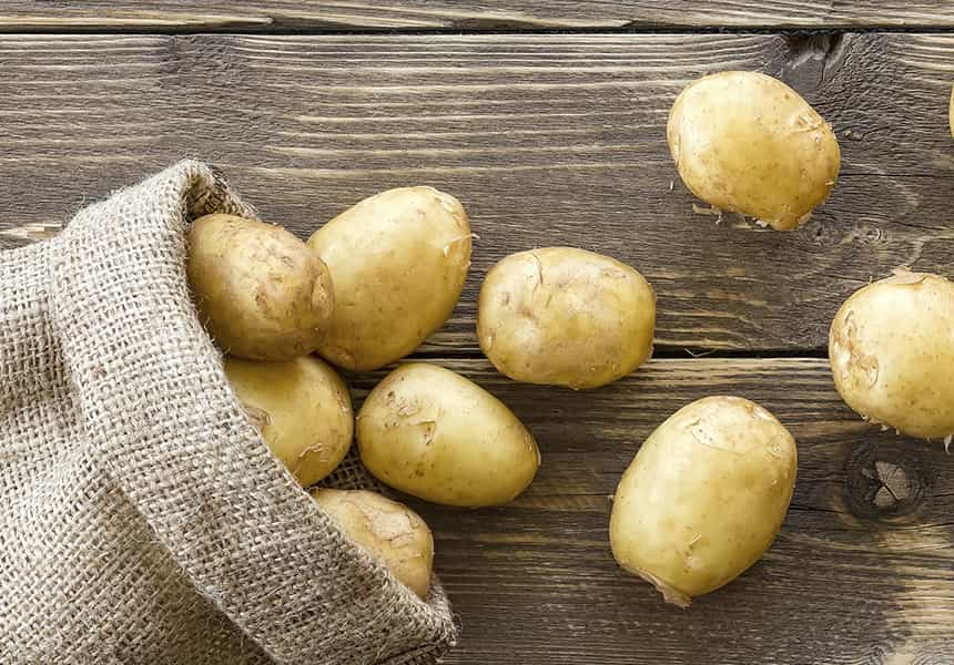 семена-картофеля-оптом