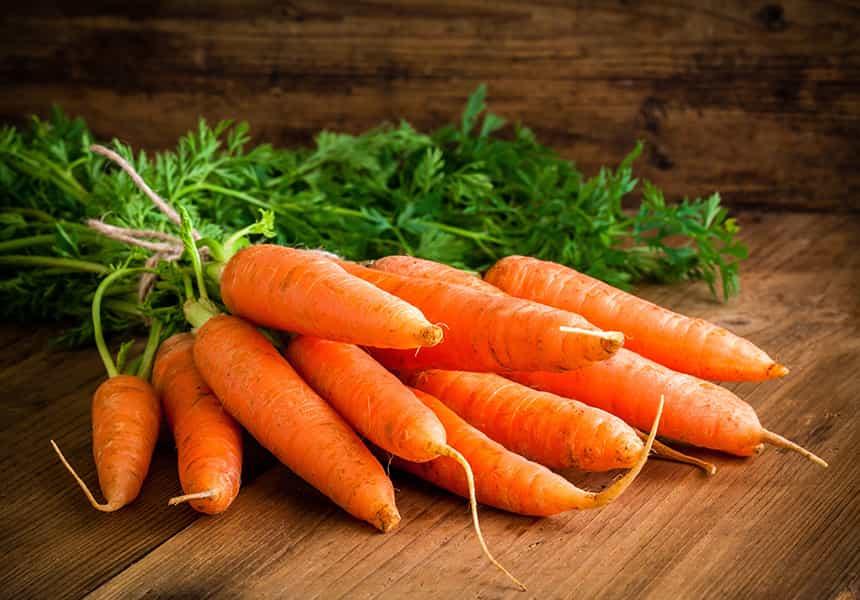 семена-моркови-оптом