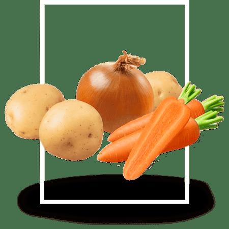 семена-овощных-культур