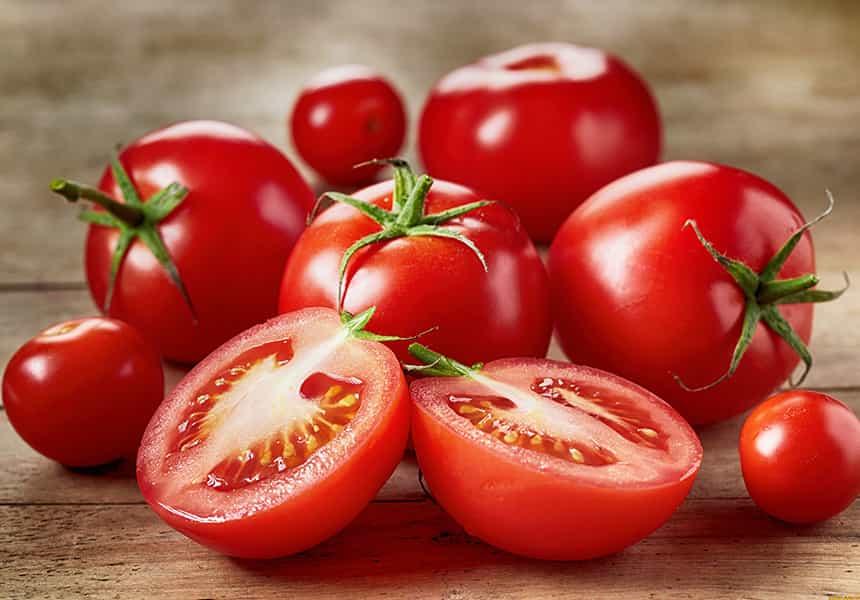 семена-томатов-оптом