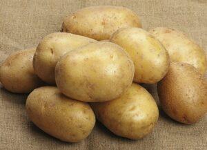 картофель-бельмондо