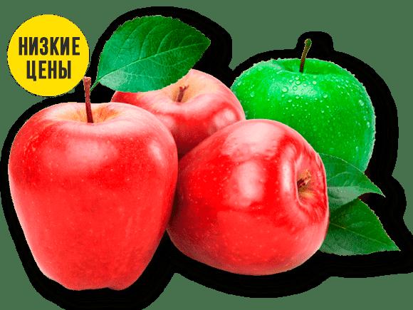 яблоки-оптом-низкие-цены