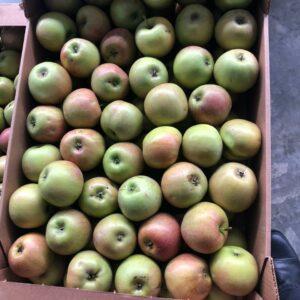 Яблоки Джонапринц оптом